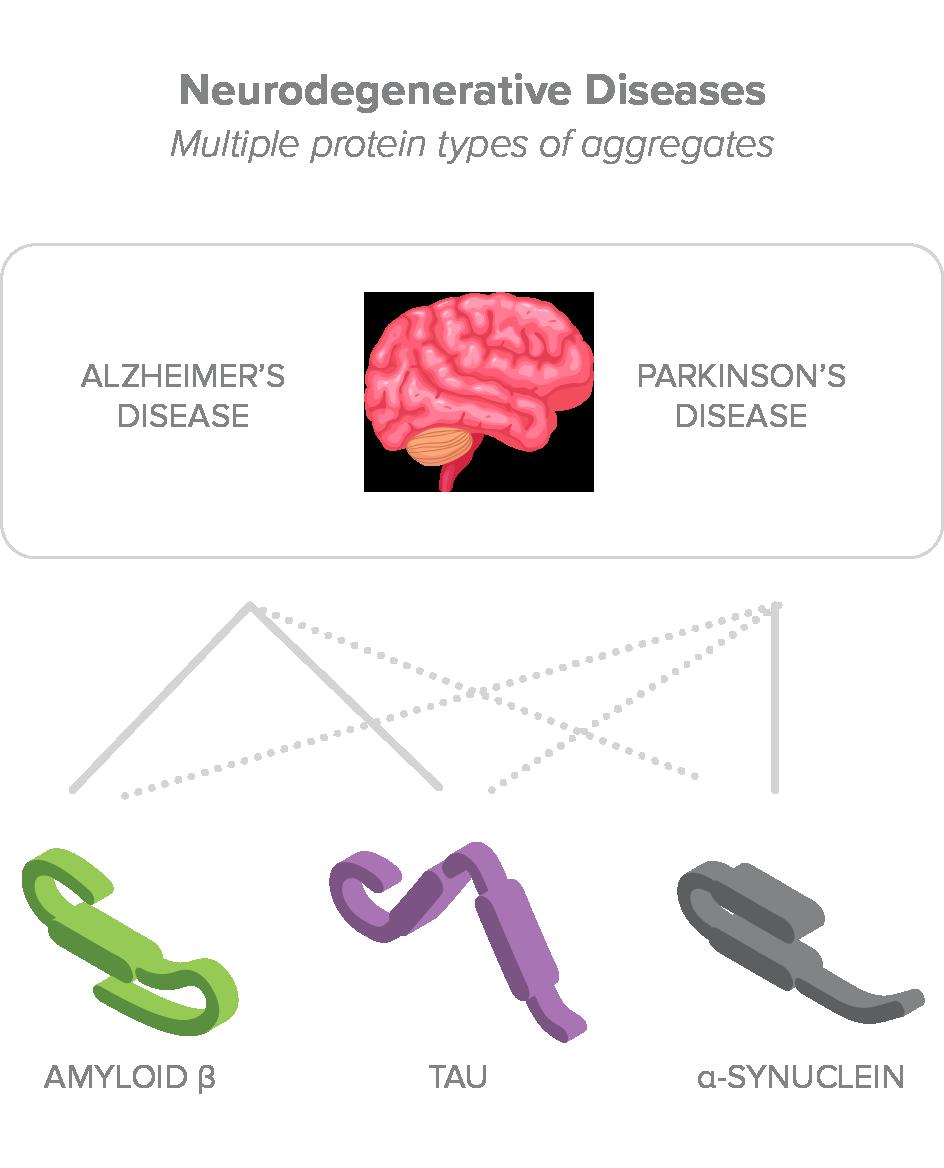 Neurodegenerative Diseases